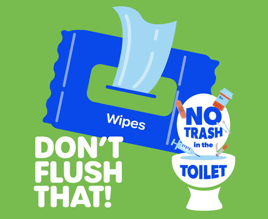 Don't Flush That Infographic