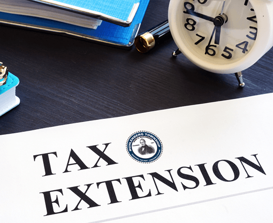 TAX EXTENSION